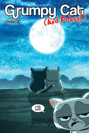 Grumpy Cat Picture Book